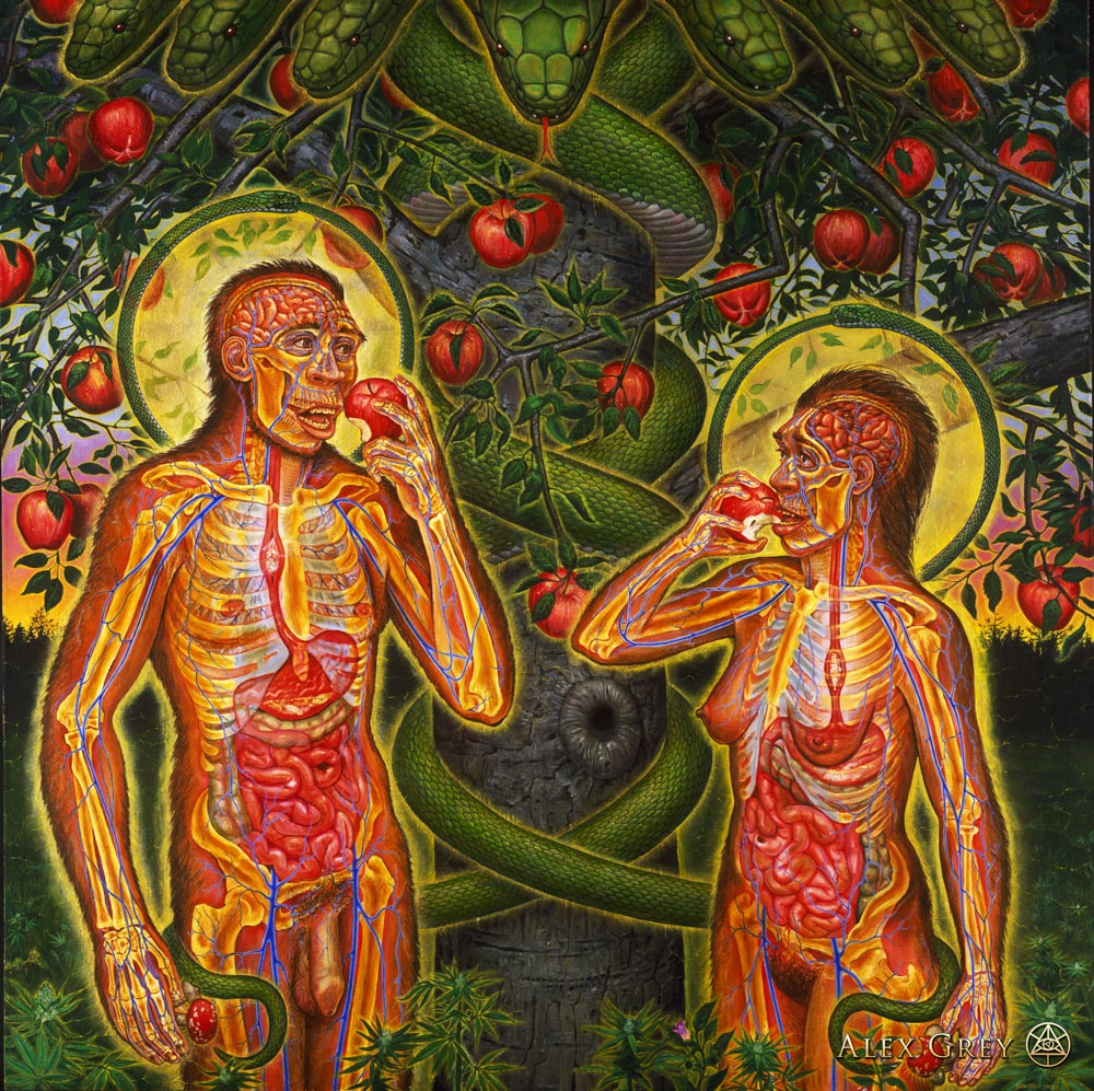 Alex Grey Adam and Eve o