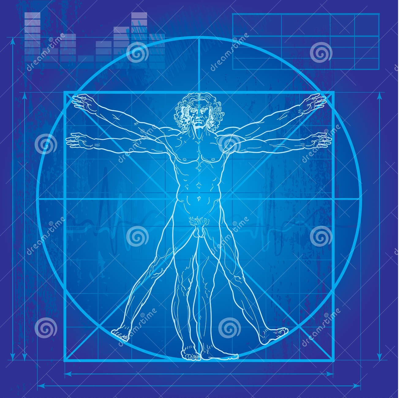 vitruvian man blueprint version 16533982